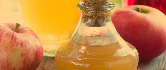 applecidervinegar-purggo