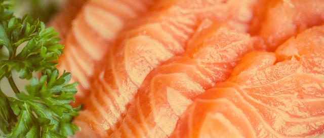 salmon-purggo